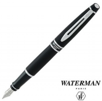 Waterman Expert Roller ball pen